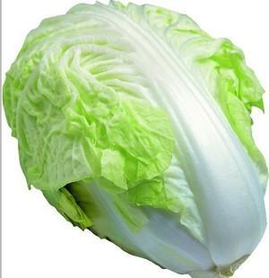 绿色养生产品大白菜