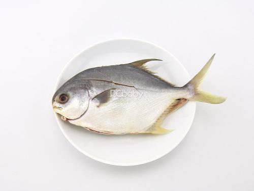 鲳鱼保健品
