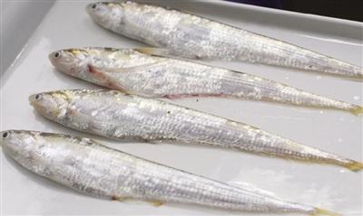 刀鱼降低胆固醇