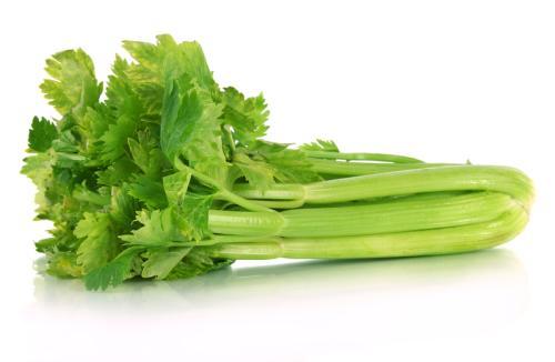 养生产品芹菜预防结肠癌