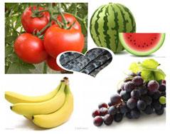 水果养生产品有用吗
