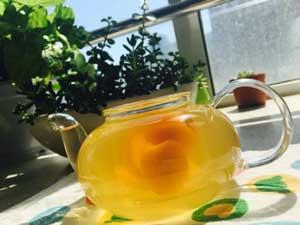 养生茶配方⑪杏茶
