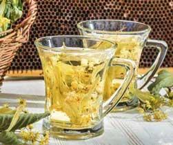 养生茶(保健茶)配方60-腊梅茶