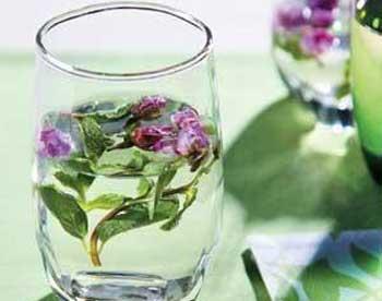 养生茶(保健茶)87-薰衣草薄荷茶