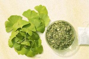 养生茶(保健茶)117-银杏叶茶