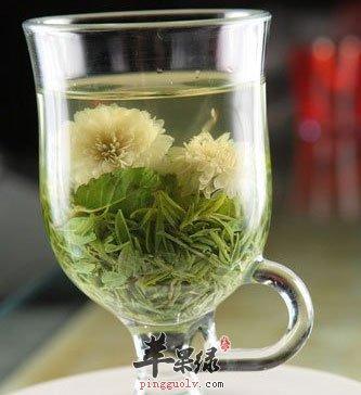 养生茶(保健茶)198-菊花龙井茶