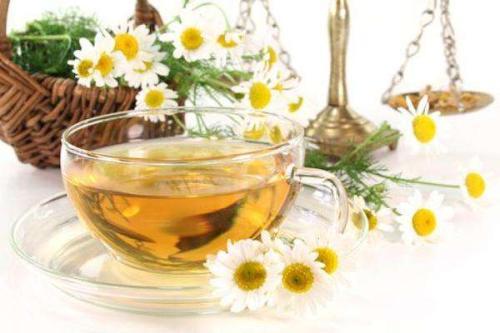 养生茶(保健茶)215-洋甘菊茶