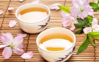 养生茶(保健茶)242-苍术茶