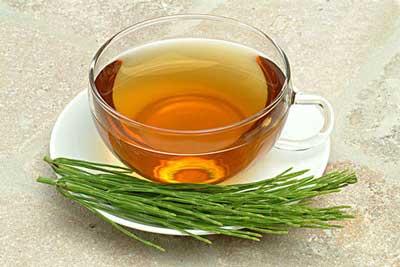 养生茶(保健茶)238-木贼茶