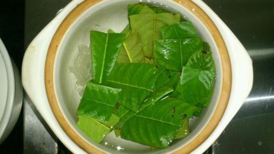 养生茶(保健茶)247-枇杷叶茶