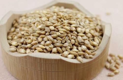 浮小麦.jpg