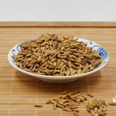 养生茶(保健茶)296-谷芽水