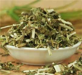 药茶(356)-益母草水