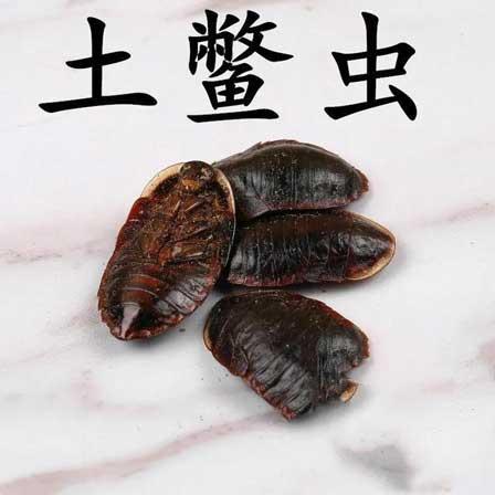 药茶(358)-土鳖虫水